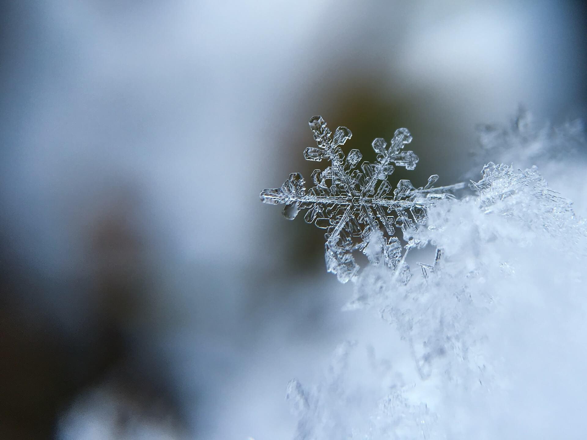 snowflake winter frozen weather